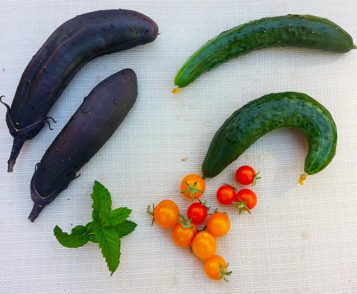 Lovely Budget Edible Garden - San Francisco Bay Area