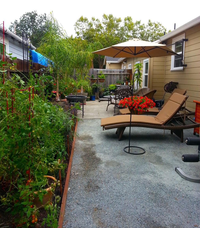 Budget Lovely Edible Garden