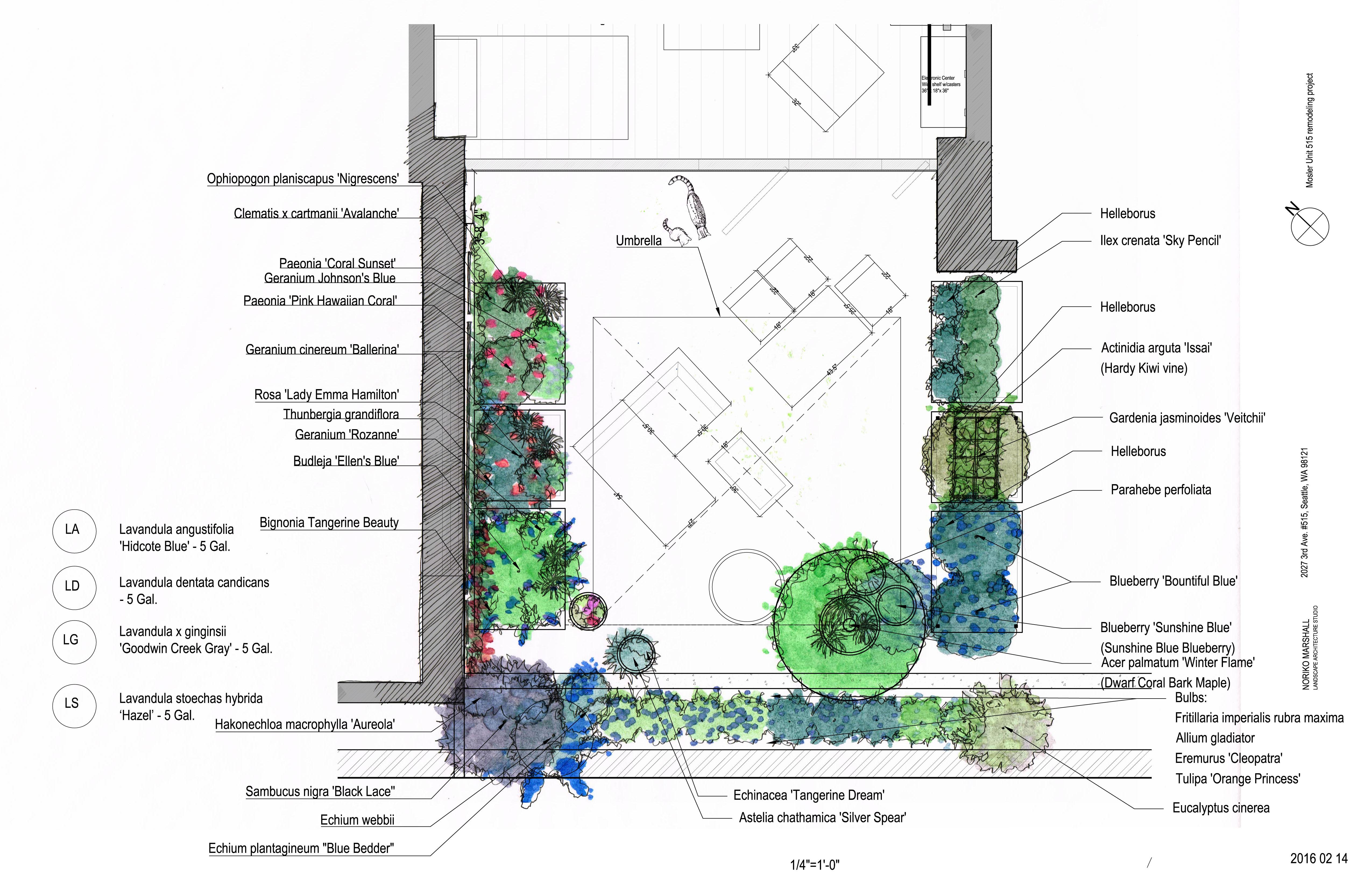 Seattle Condo Garden Design